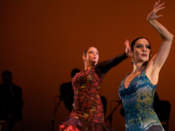 Flamenco - Spain
